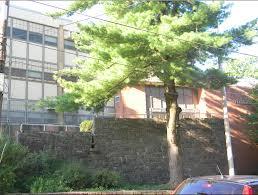 My Elementary School.
