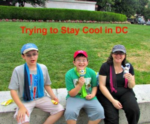 Summer of trying to stay cool in DC